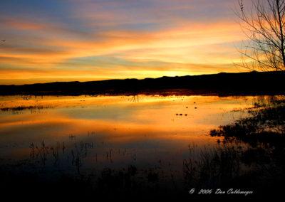 Bosque del Apache Sunset 3