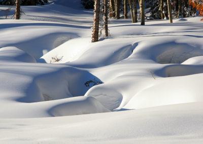 Fresh Snow Sundance Utah_9306 copy