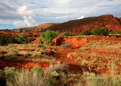 Jemez Springs NM Red Canyon # 001