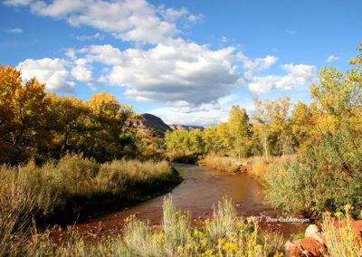 Jemez Springs River 008