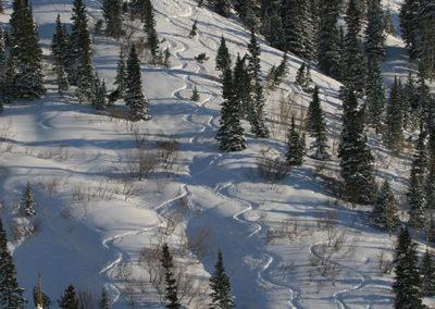 Park City Utah Ski Tracks_9278