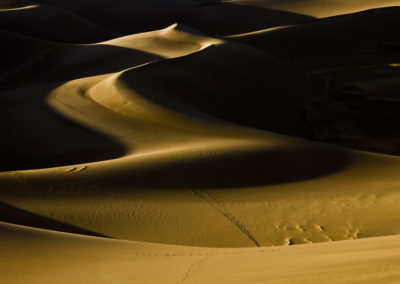 Shadows of the Great Sand Dunes of Co Lg 1700