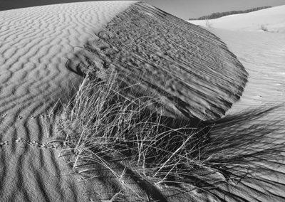 Shifting Sands B&W_5245