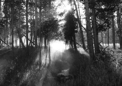 Sunrise Mist Yellowstone NP 004