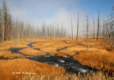 Yellowstone 119