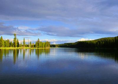 Yellowstone River Lg 221