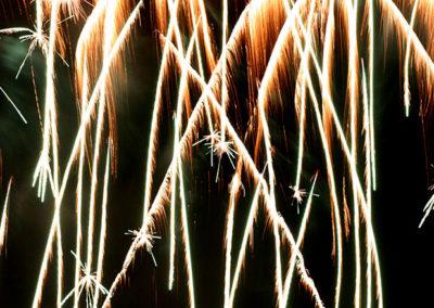 Fireworks Albq Balloon Fest Palm Trees 107