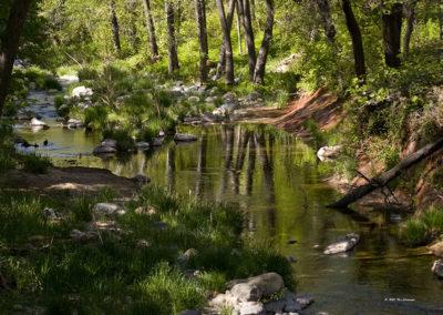 Oak Creek Canyon West Fork_3512