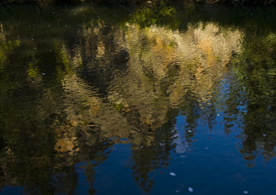Painted Reflections Jemez River NM 2089