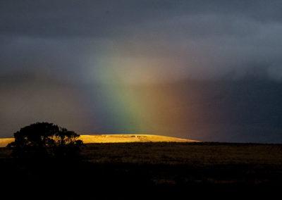 Rainbow Maasi Mara Kenya Africa 1829