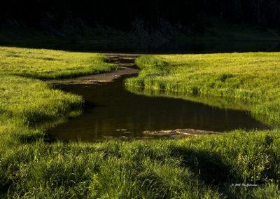 Reflections Mountain Stream Colo 1088