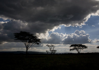 Storm Pending Amboseli NP Kenya Africa_0939