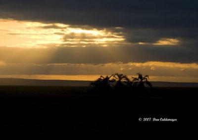 Sunset Amboselli NP_0962