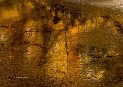 Winter Reflections of Oak Creek West Fork Sedona Az4726